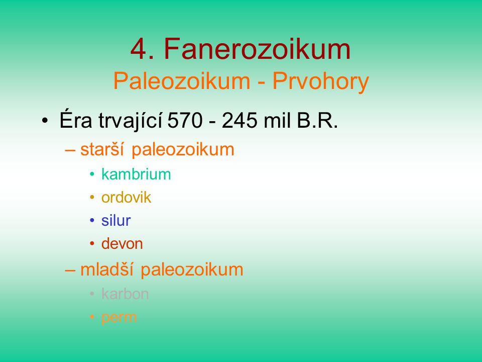 4. Fanerozoikum Paleozoikum - Prvohory Éra trvající 570 - 245 mil B.R. –starší paleozoikum kambrium ordovik silur devon –mladší paleozoikum karbon per