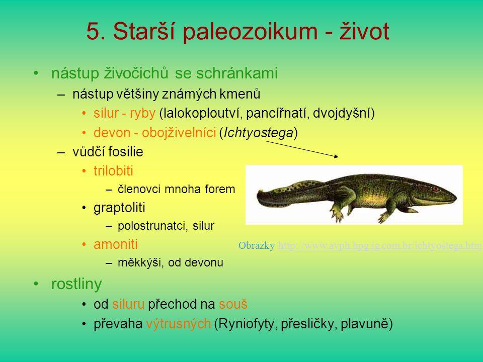 5. Starší paleozoikum - život nástup živočichů se schránkami –nástup většiny známých kmenů silur - ryby (lalokoploutví, pancířnatí, dvojdyšní) devon -