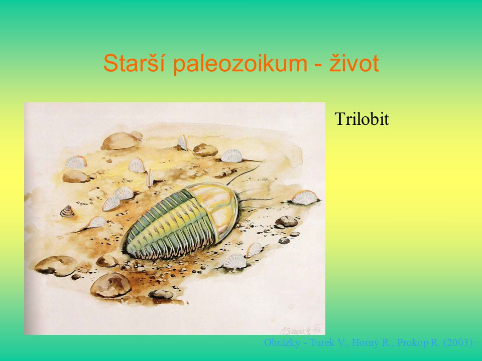 Starší paleozoikum - život Trilobit Obrázky - Turek V., Horný R., Prokop R. (2003):