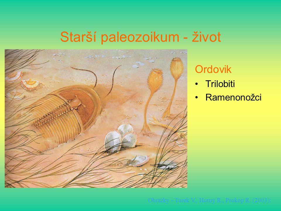 Starší paleozoikum - život Ordovik Trilobiti Ramenonožci Obrázky - Turek V., Horný R., Prokop R. (2003):
