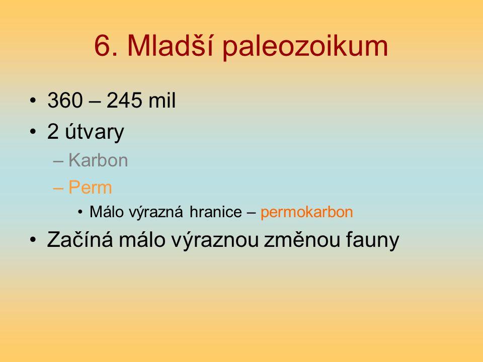 6. Mladší paleozoikum 360 – 245 mil 2 útvary –Karbon –Perm Málo výrazná hranice – permokarbon Začíná málo výraznou změnou fauny