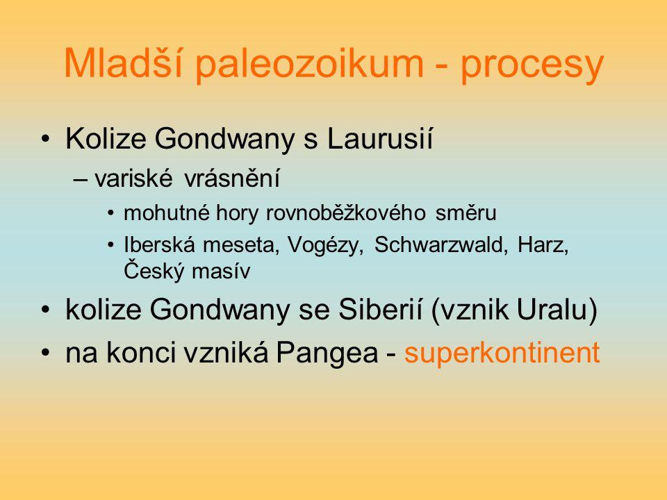 Mladší paleozoikum - procesy Kolize Gondwany s Laurusií –variské vrásnění mohutné hory rovnoběžkového směru Iberská meseta, Vogézy, Schwarzwald, Harz,