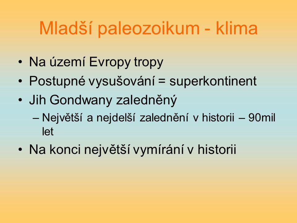 Mladší paleozoikum - klima Na území Evropy tropy Postupné vysušování = superkontinent Jih Gondwany zaledněný –Největší a nejdelší zalednění v historii