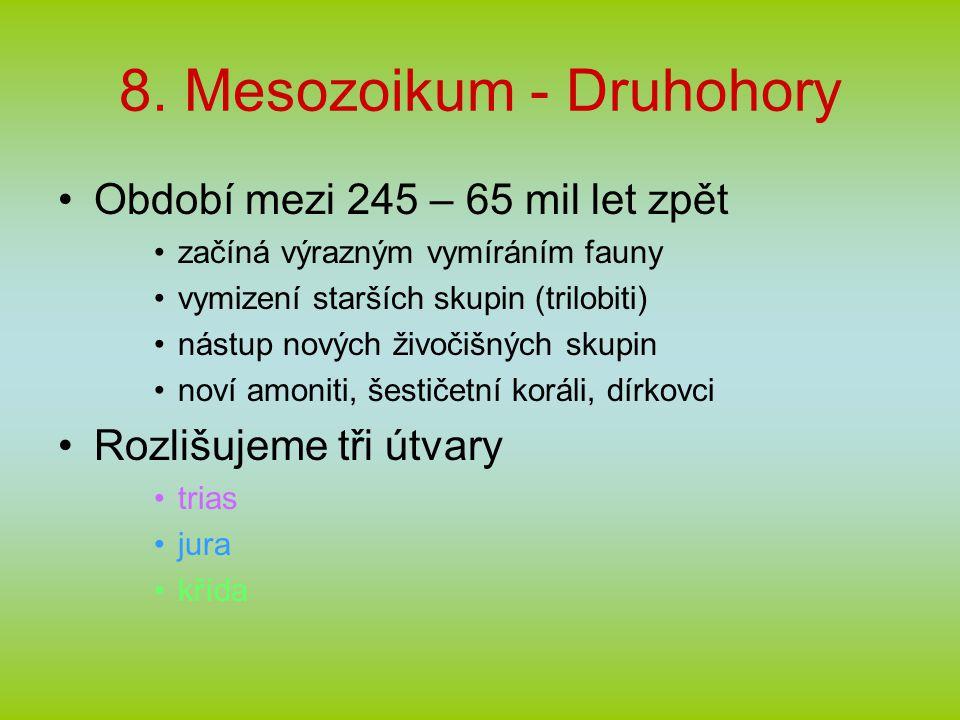 8. Mesozoikum - Druhohory Období mezi 245 – 65 mil let zpět začíná výrazným vymíráním fauny vymizení starších skupin (trilobiti) nástup nových živočiš