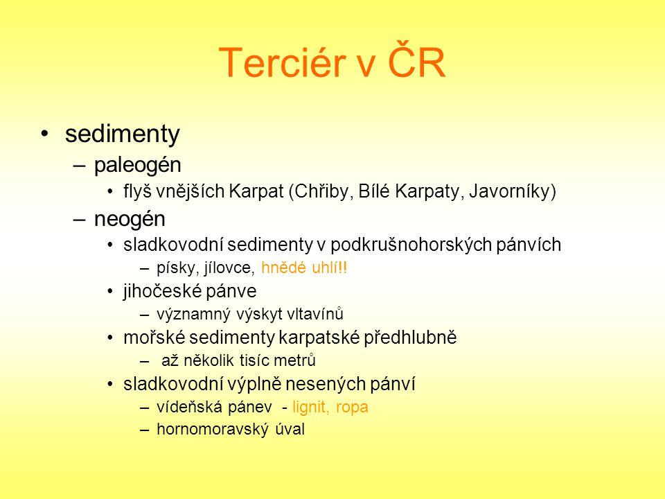 Terciér v ČR sedimenty –paleogén flyš vnějších Karpat (Chřiby, Bílé Karpaty, Javorníky) –neogén sladkovodní sedimenty v podkrušnohorských pánvích –pís