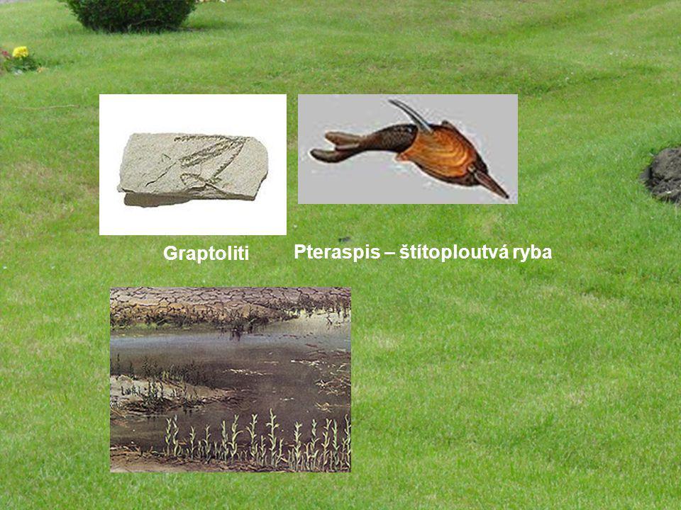 Silur 435 – 416 mil let pokračuje vrásnění, pohyby kontinentů teplé podnebí měkkýši, graptoliti, koráli, lilijice, čelistnaté ryby cévnaté rostliny Drahanská vrchovina