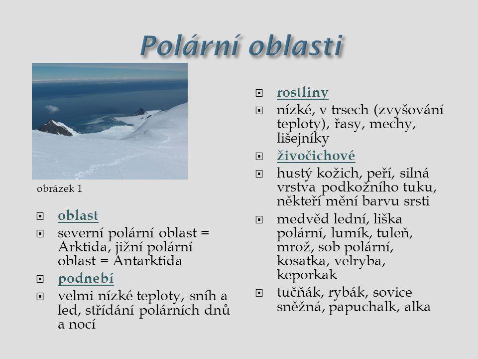 Polární oblasti  oblast  Arktida, Antaktida  podnebí  nízké teploty, sníh a led, polární dny a noci  rostliny  nízké, v trsech, řasy, mechy, lišejníky  živočichové  hustý kožich, peří, silná vrstva podkožního tuku  medvěd lední, liška polární, tuleň, mrož, sob polární, kosatka, velryba  tučňák, sovice sněžná, papuchalk