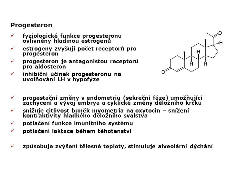 Progesteron fyziologické funkce progesteronu ovlivněny hladinou estrogenů estrogeny zvyšují počet receptorů pro progesteron progesteron je antagonistou receptorů pro aldosteron inhibiční účinek progesteronu na uvolňování LH v hypofýze progestační změny v endometriu (sekreční fáze) umožňující zachycení a vývoj embrya a cyklické změny děložního krčku snižuje citlivost buněk myometria na oxytocin – snížení kontraktivity hladkého děložního svalstva potlačení funkce imunitního systému potlačení laktace během těhotenství způsobuje zvýšení tělesné teploty, stimuluje alveolární dýchání