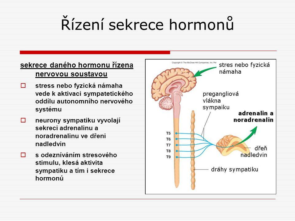 Řízení sekrece hormonů sekrece daného hormonu řízena nervovou soustavou  stress nebo fyzická námaha vede k aktivaci sympatetického oddílu autonomního nervového systému  neurony sympatiku vyvolají sekreci adrenalinu a noradrenalinu ve dřeni nadledvin  s odezníváním stresového stimulu, klesá aktivita sympatiku a tím i sekrece hormonů