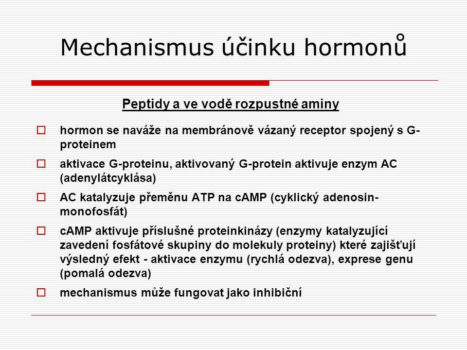 Mechanismus účinku hormonů Peptidy a ve vodě rozpustné aminy  hormon se naváže na membránově vázaný receptor spojený s G- proteinem  aktivace G-proteinu, aktivovaný G-protein aktivuje enzym AC (adenylátcyklása)  AC katalyzuje přeměnu ATP na cAMP (cyklický adenosin- monofosfát)  cAMP aktivuje příslušné proteinkinázy (enzymy katalyzující zavedení fosfátové skupiny do molekuly proteiny) které zajišťují výsledný efekt - aktivace enzymu (rychlá odezva), exprese genu (pomalá odezva)  mechanismus může fungovat jako inhibiční