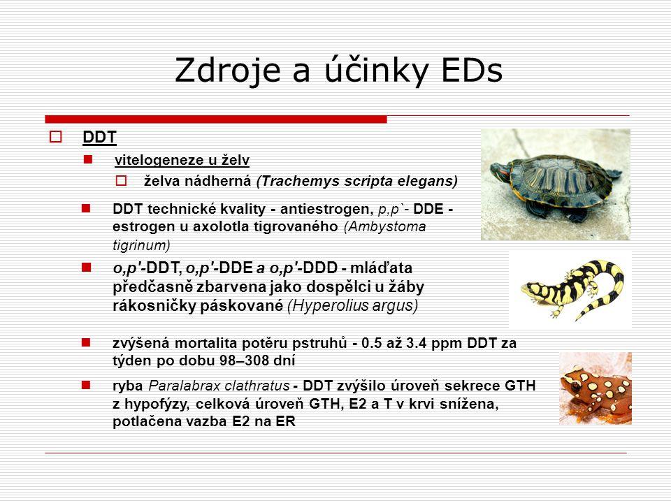 Zdroje a účinky EDs  DDT vitelogeneze u želv  želva nádherná (Trachemys scripta elegans) DDT technické kvality - antiestrogen, p,p`- DDE - estrogen u axolotla tigrovaného (Ambystoma tigrinum) o,p′-DDT, o,p′-DDE a o,p′-DDD - mláďata předčasně zbarvena jako dospělci u žáby rákosničky páskované (Hyperolius argus) zvýšená mortalita potěru pstruhů - 0.5 až 3.4 ppm DDT za týden po dobu 98–308 dní ryba Paralabrax clathratus - DDT zvýšilo úroveň sekrece GTH z hypofýzy, celková úroveň GTH, E2 a T v krvi snížena, potlačena vazba E2 na ER
