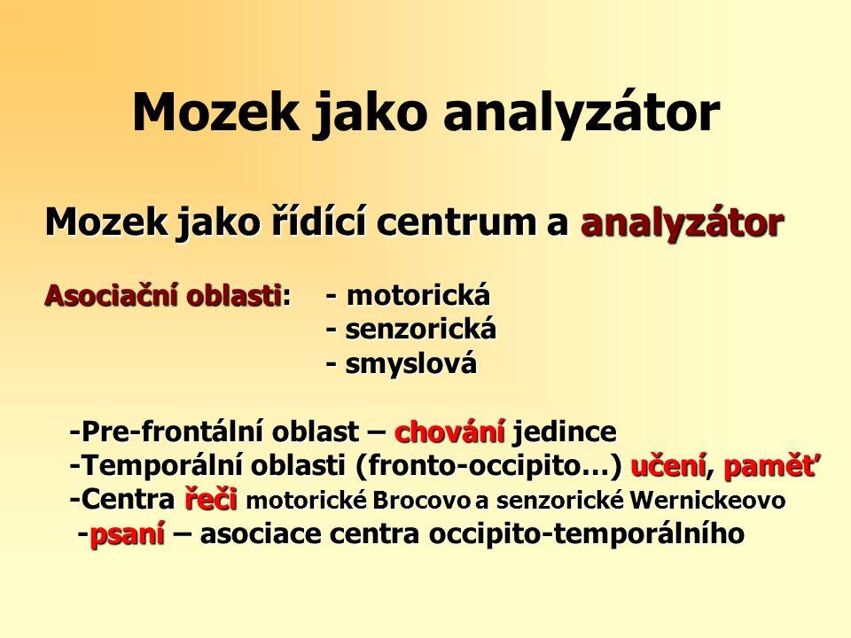 Mozek jako analyzátor Mozek jako řídící centrum a analyzátor Asociační oblasti: - motorická - senzorická - senzorická - smyslová - smyslová -Pre-frontální oblast – chování jedince -Pre-frontální oblast – chování jedince -Temporální oblasti (fronto-occipito…) učení, paměť -Temporální oblasti (fronto-occipito…) učení, paměť -Centra řeči motorické Brocovo a senzorické Wernickeovo -Centra řeči motorické Brocovo a senzorické Wernickeovo -psaní – asociace centra occipito-temporálního -psaní – asociace centra occipito-temporálního