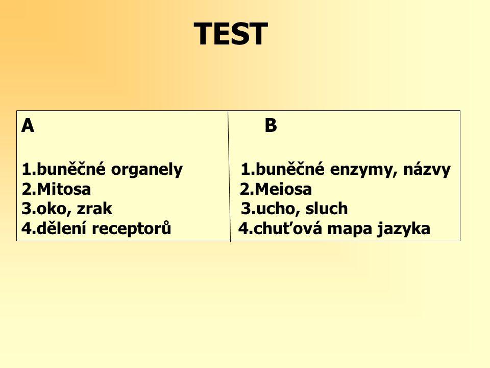 A B 1.buněčné organely 1.buněčné enzymy, názvy 2.Mitosa 2.Meiosa 3.oko, zrak 3.ucho, sluch 4.dělení receptorů 4.chuťová mapa jazyka TEST