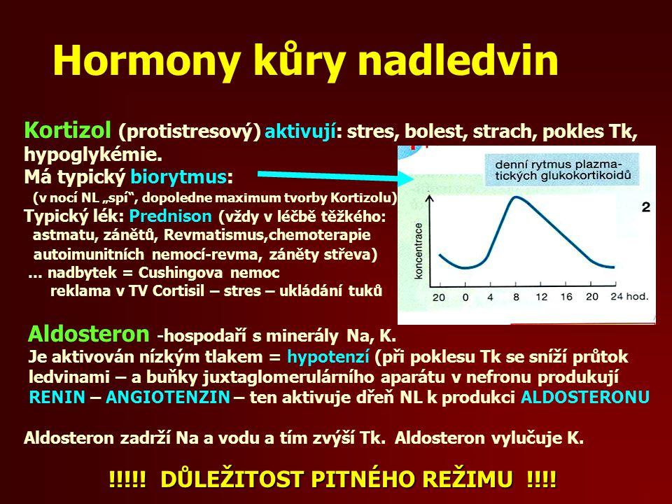 "Hormony kůry nadledvin Kortizol (protistresový) aktivují: stres, bolest, strach, pokles Tk, hypoglykémie. Má typický biorytmus: (v nocí NL ""spí"", dopo"