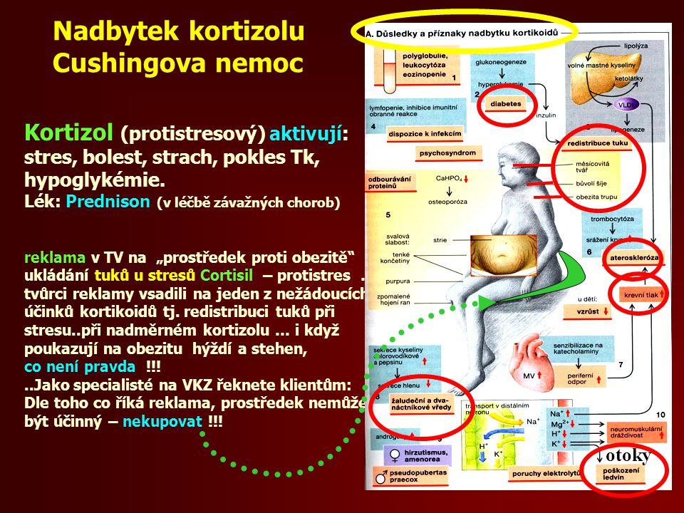 Nadbytek kortizolu Cushingova nemoc Kortizol (protistresový) aktivují: stres, bolest, strach, pokles Tk, hypoglykémie.