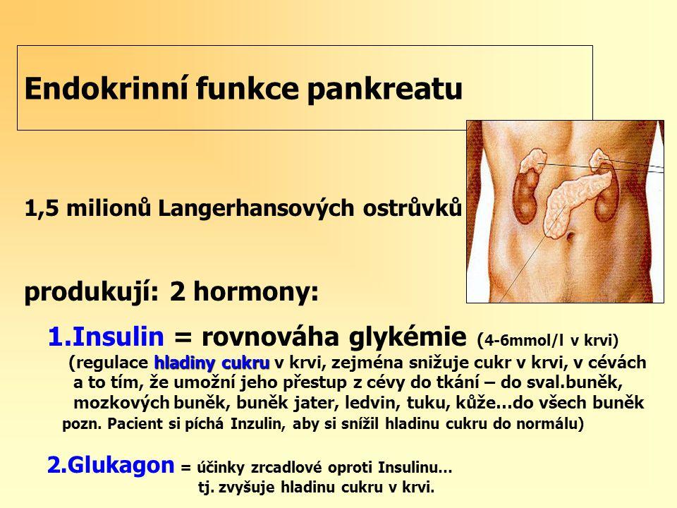 Endokrinní funkce pankreatu 1,5 milionů Langerhansových ostrůvků produkují: 2 hormony: 1.Insulin = rovnováha glykémie ( 4-6mmol/l v krvi) hladiny cukru (regulace hladiny cukru v krvi, zejména snižuje cukr v krvi, v cévách a to tím, že umožní jeho přestup z cévy do tkání – do sval.buněk, mozkových buněk, buněk jater, ledvin, tuku, kůže…do všech buněk pozn.