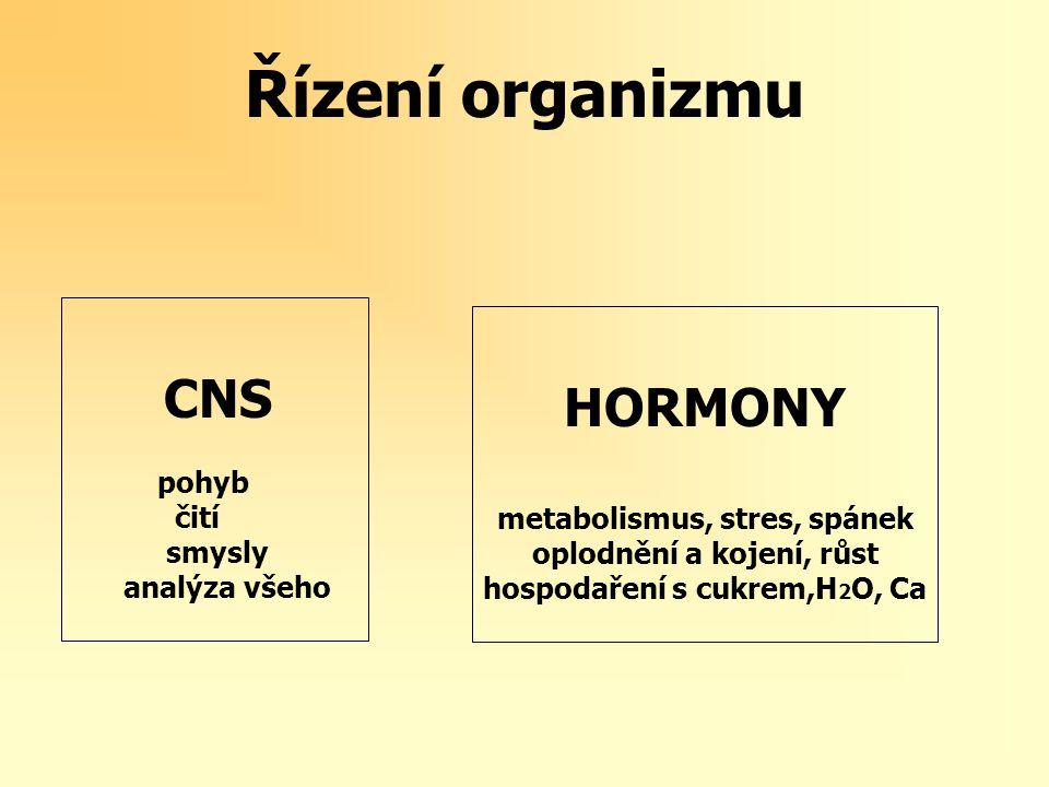 Řízení organizmu CNS HORMONY (pohyb, čití, smysly, metabolismus, stres, spánek analýza všeho) oplodnění a kojení, růst hospodaření s cukrem,H 2 O, Ca Vztah mezi CNS a hormony je velice blízký protože některé hormony přímo ovlivňují CNS(melatonin-spánek) a naopak, některé transmitéry CNS mají hormonální povahu (A,NoA)