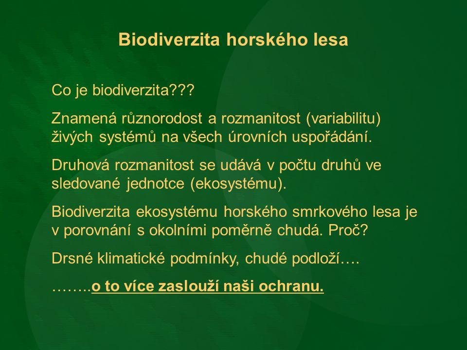 Biodiverzita horského lesa Co je biodiverzita??? Znamená různorodost a rozmanitost (variabilitu) živých systémů na všech úrovních uspořádání. Druhová