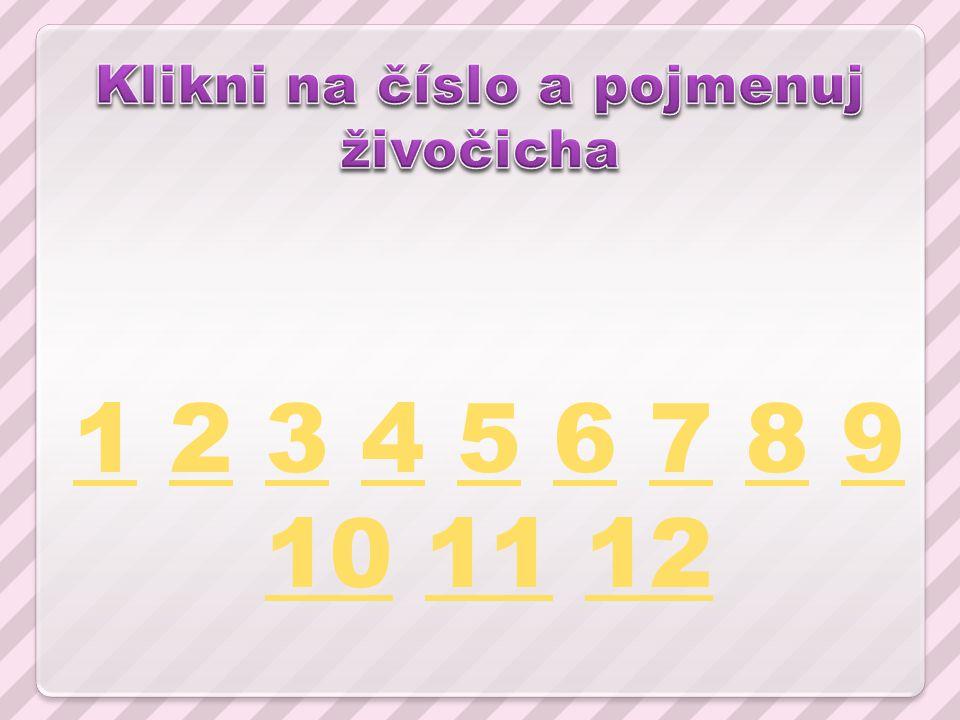 11 2 3 4 5 6 7 8 9 10 11 1223456789 101112