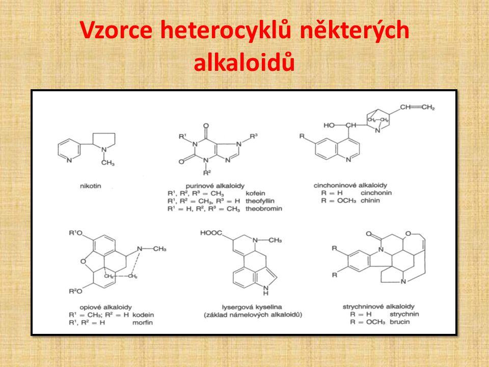 Vzorce heterocyklů některých alkaloidů