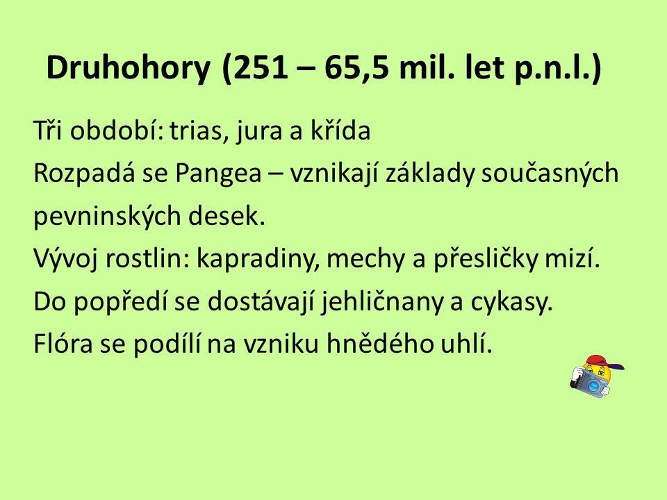 Druhohory (251 – 65,5 mil.