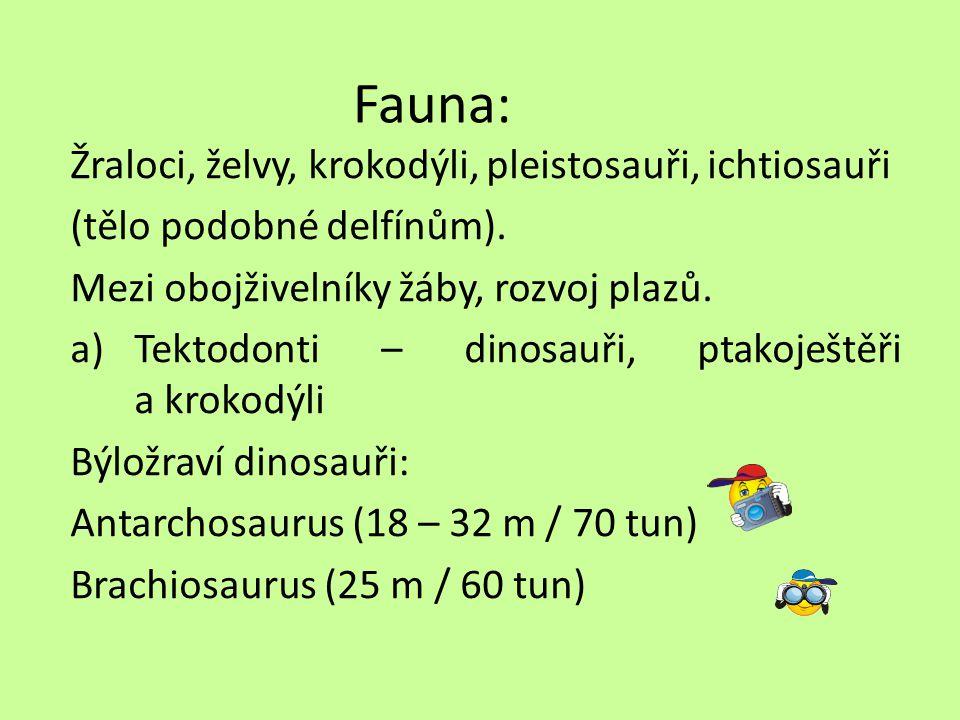 Fauna: Žraloci, želvy, krokodýli, pleistosauři, ichtiosauři (tělo podobné delfínům).