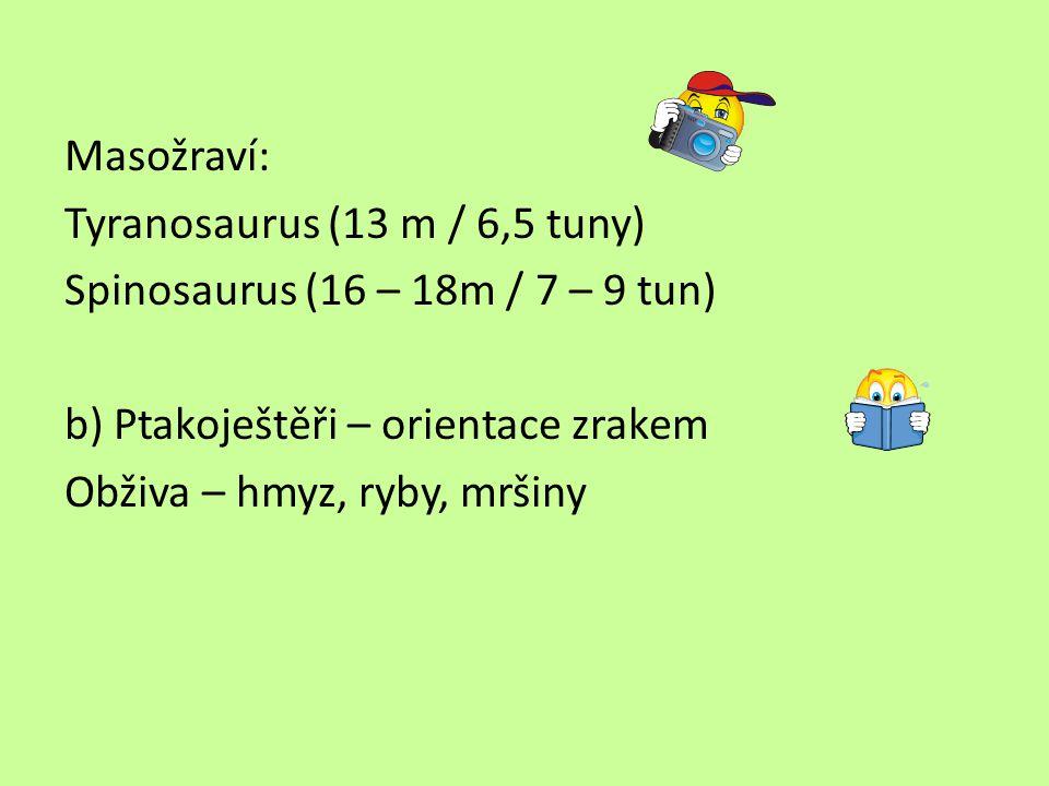 Masožraví: Tyranosaurus (13 m / 6,5 tuny) Spinosaurus (16 – 18m / 7 – 9 tun) b) Ptakoještěři – orientace zrakem Obživa – hmyz, ryby, mršiny