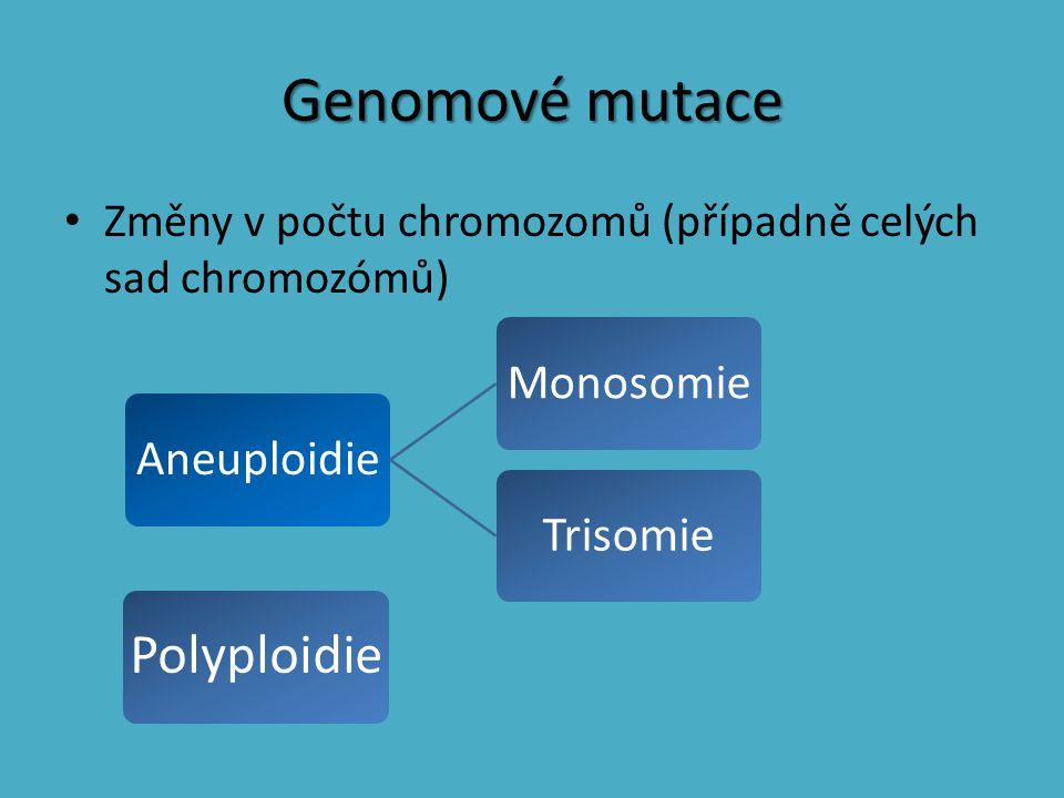 Genomové mutace Změny v počtu chromozomů (případně celých sad chromozómů) AneuploidieMonosomieTrisomie Polyploidie