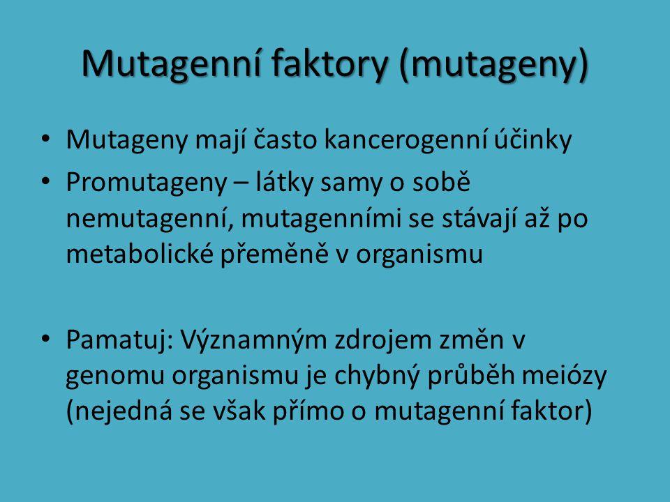 Mutagenní faktory (mutageny) Mutageny mají často kancerogenní účinky Promutageny – látky samy o sobě nemutagenní, mutagenními se stávají až po metabol
