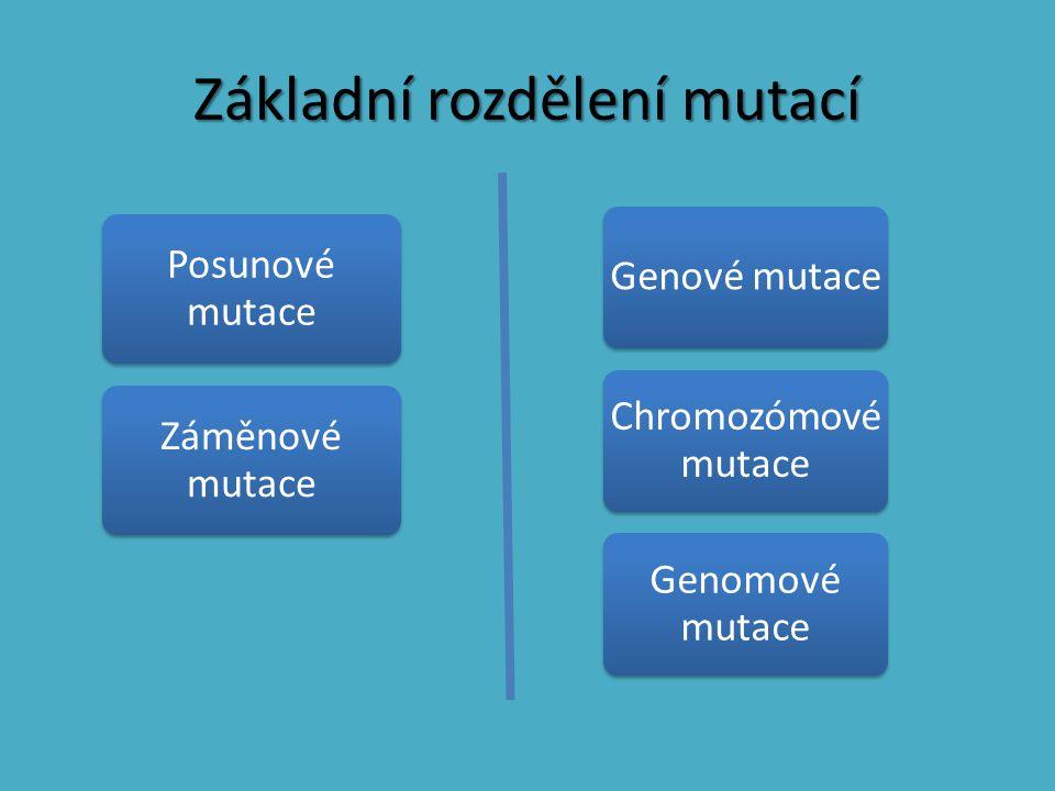 Základní rozdělení mutací Genové mutace Chromozómové mutace Genomové mutace Posunové mutace Záměnové mutace