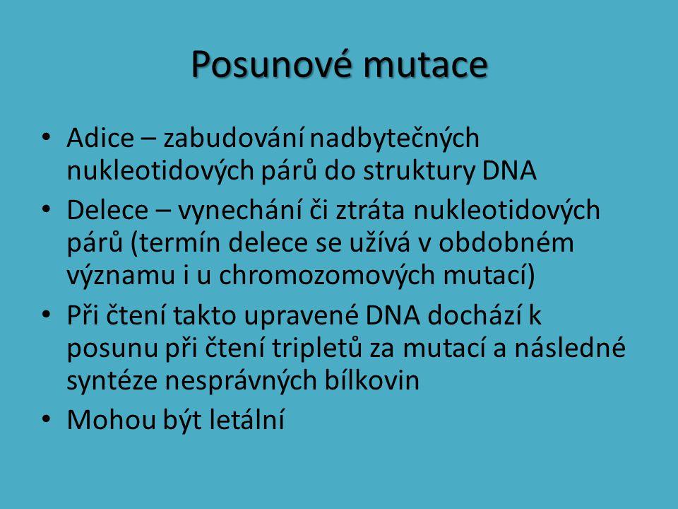 Posunové mutace Adice – zabudování nadbytečných nukleotidových párů do struktury DNA Delece – vynechání či ztráta nukleotidových párů (termín delece s