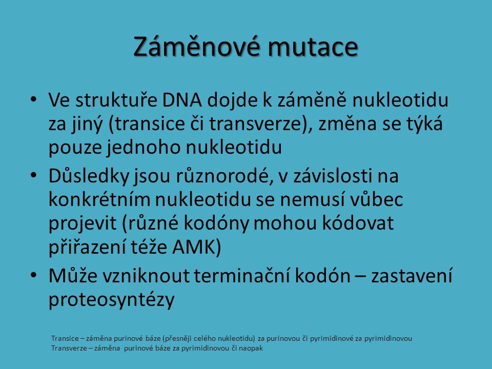 Záměnové mutace Ve struktuře DNA dojde k záměně nukleotidu za jiný (transice či transverze), změna se týká pouze jednoho nukleotidu Důsledky jsou různ