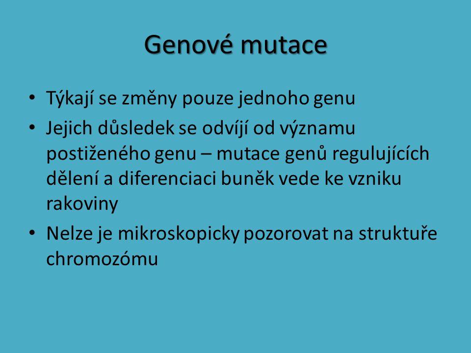 Genové mutace Týkají se změny pouze jednoho genu Jejich důsledek se odvíjí od významu postiženého genu – mutace genů regulujících dělení a diferenciac