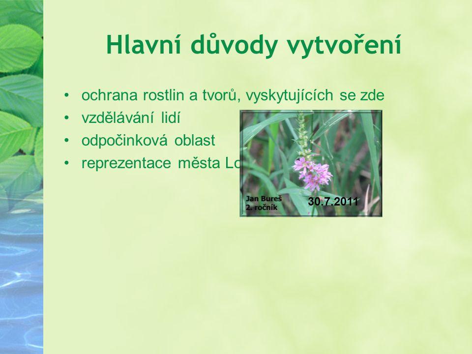 Hlavní důvody vytvoření ochrana rostlin a tvorů, vyskytujících se zde vzdělávání lidí odpočinková oblast reprezentace města Lomnice nad Lužnicí 30.7.2