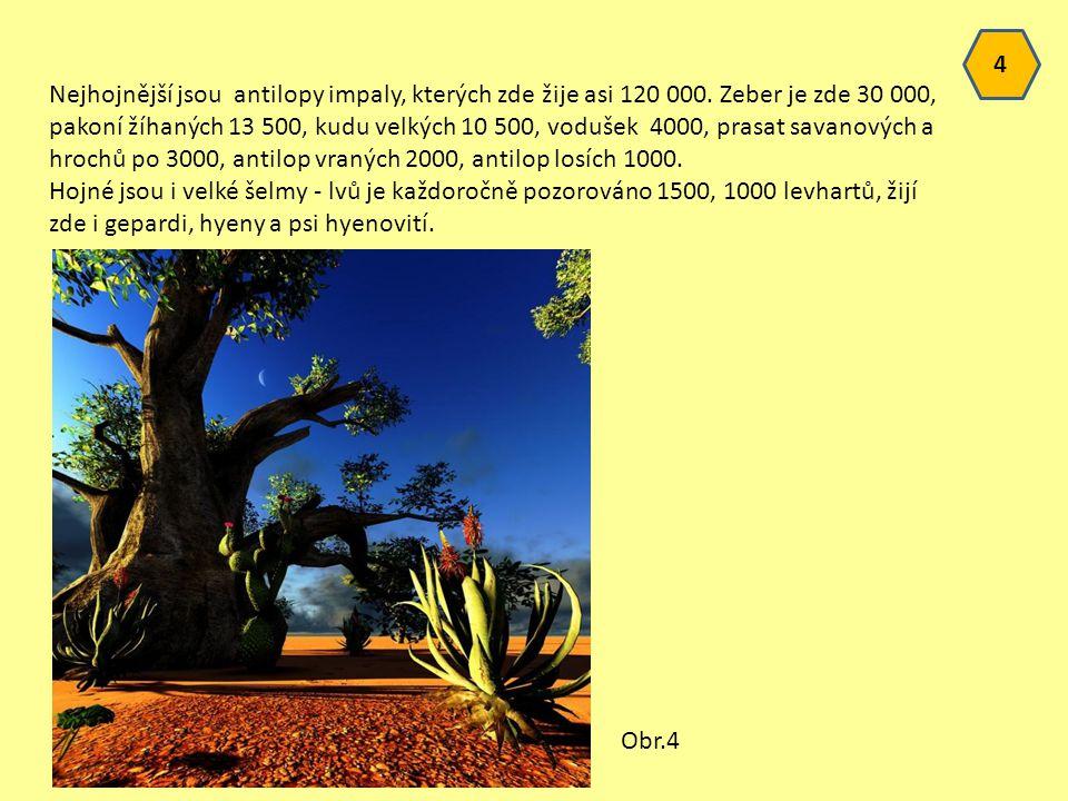 4 Nejhojnější jsou antilopy impaly, kterých zde žije asi 120 000.