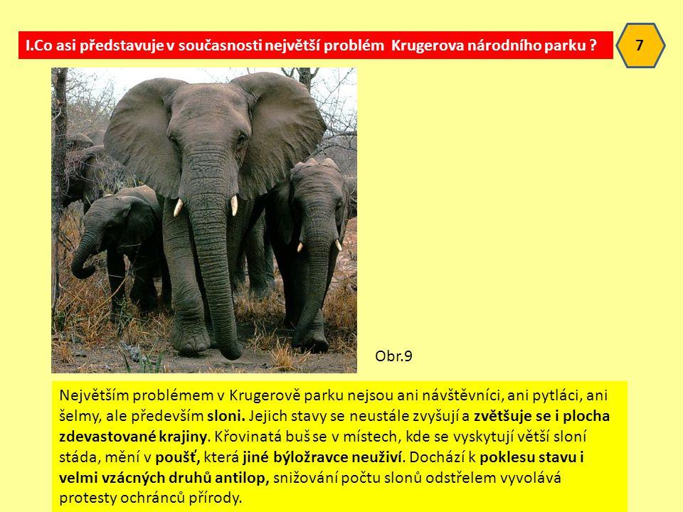 Největším problémem v Krugerově parku nejsou ani návštěvníci, ani pytláci, ani šelmy, ale především sloni.