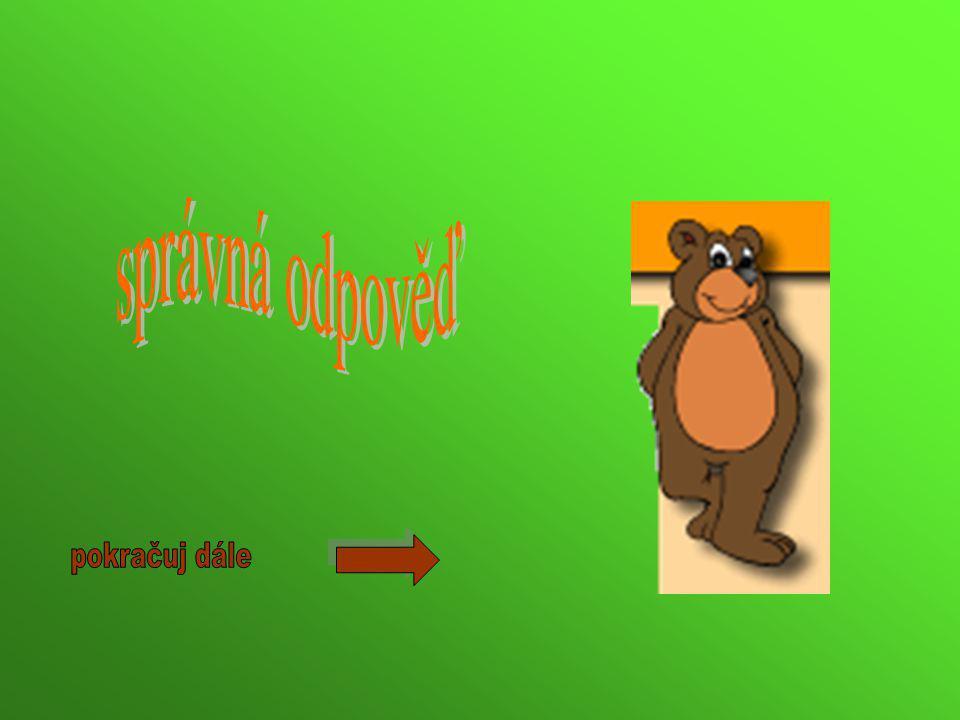 Medvěd se živí pouze lesními plody a kořínky.