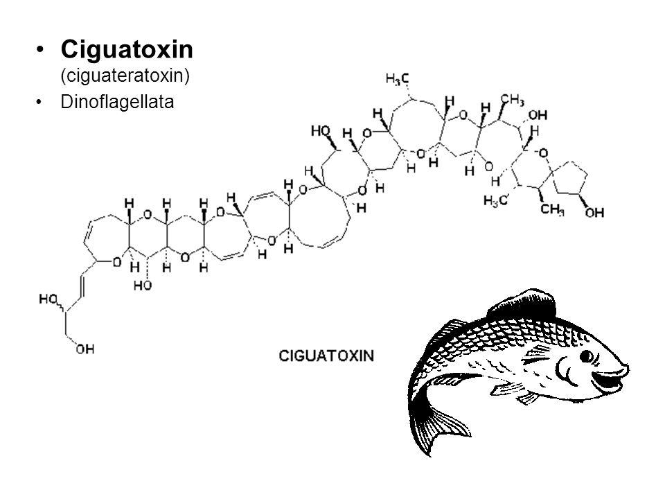 Ciguatoxin (ciguateratoxin) Dinoflagellata
