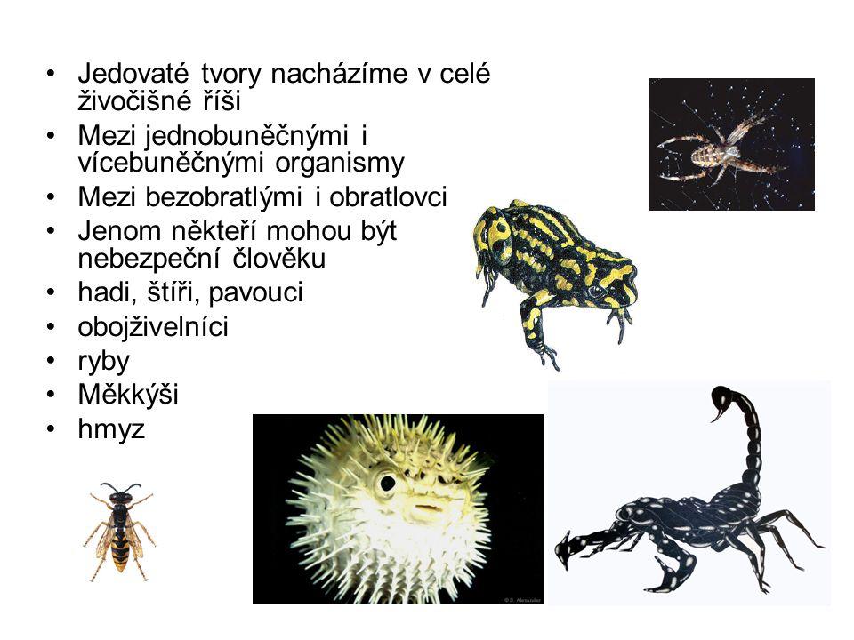 Jedovaté tvory nacházíme v celé živočišné říši Mezi jednobuněčnými i vícebuněčnými organismy Mezi bezobratlými i obratlovci Jenom někteří mohou být ne