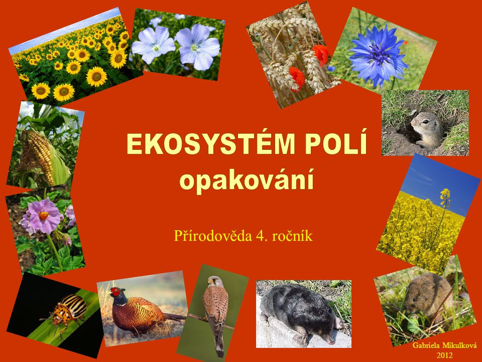 Pole je ekosystém uměle vytvořený člověkem.