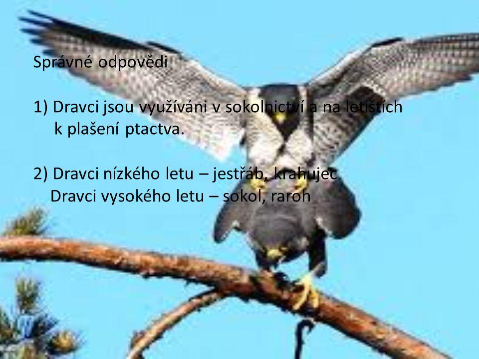 Správné odpovědi 1) Dravci jsou využíváni v sokolnictví a na letištích k plašení ptactva. 2) Dravci nízkého letu – jestřáb, krahujec Dravci vysokého l