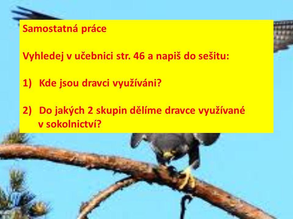 Samostatná práce Vyhledej v učebnici str. 46 a napiš do sešitu: 1)Kde jsou dravci využíváni? 2)Do jakých 2 skupin dělíme dravce využívané v sokolnictv