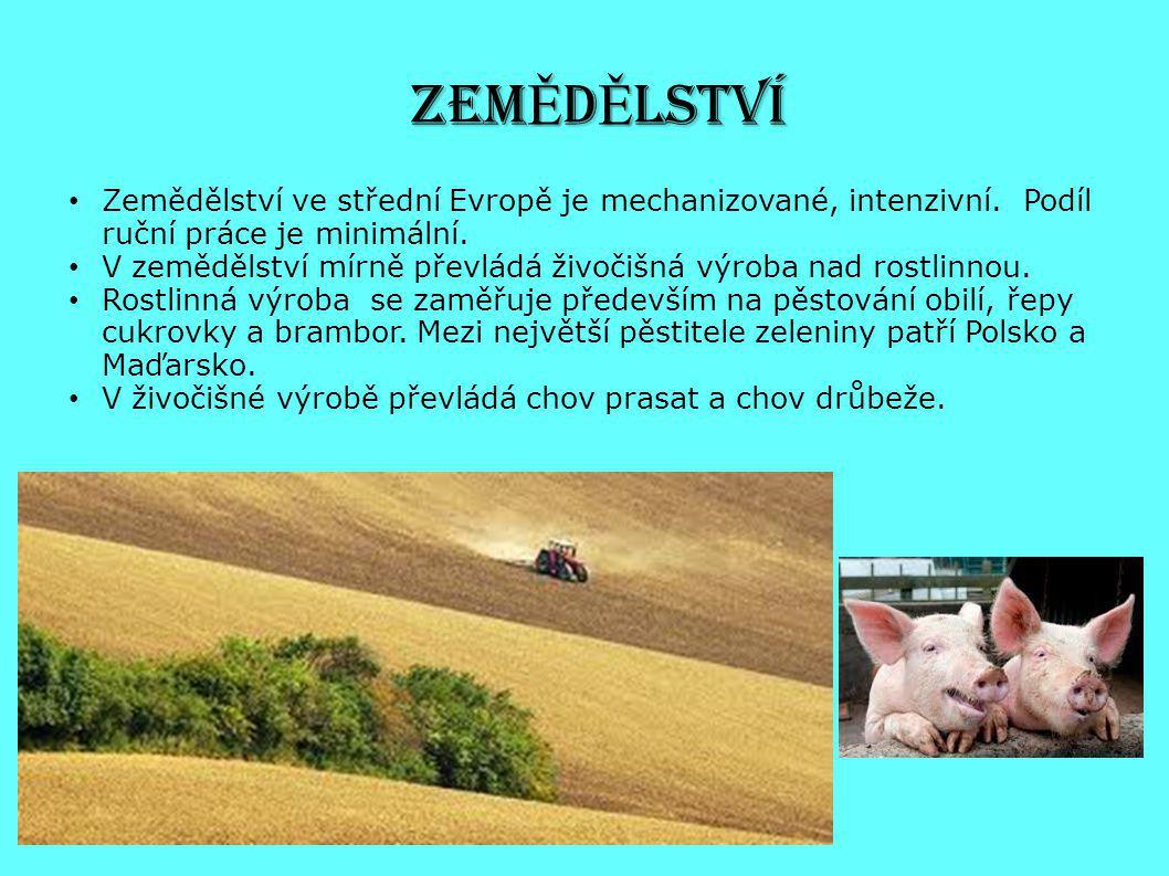 ZEM Ě D Ě LSTVÍ Zemědělství ve střední Evropě je mechanizované, intenzivní. Podíl ruční práce je minimální. V zemědělství mírně převládá živočišná výr
