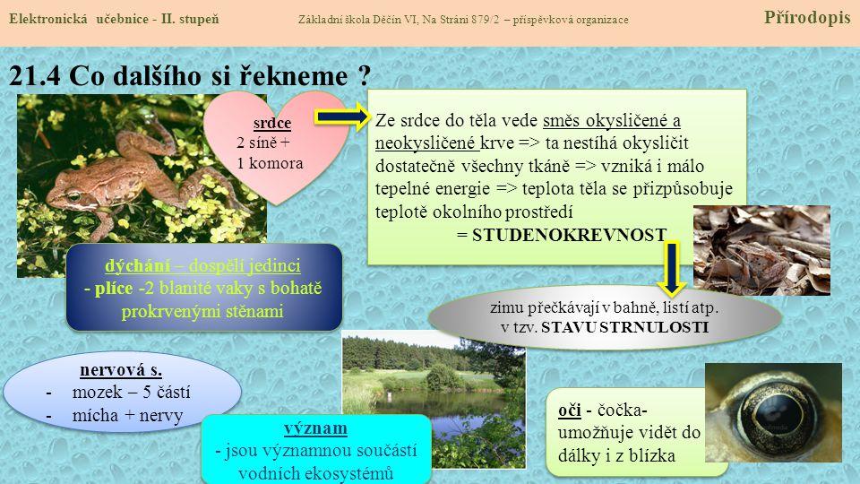 21.5 Rozdělení + nejznámější zástupci v ČR Elektronická učebnice - II.