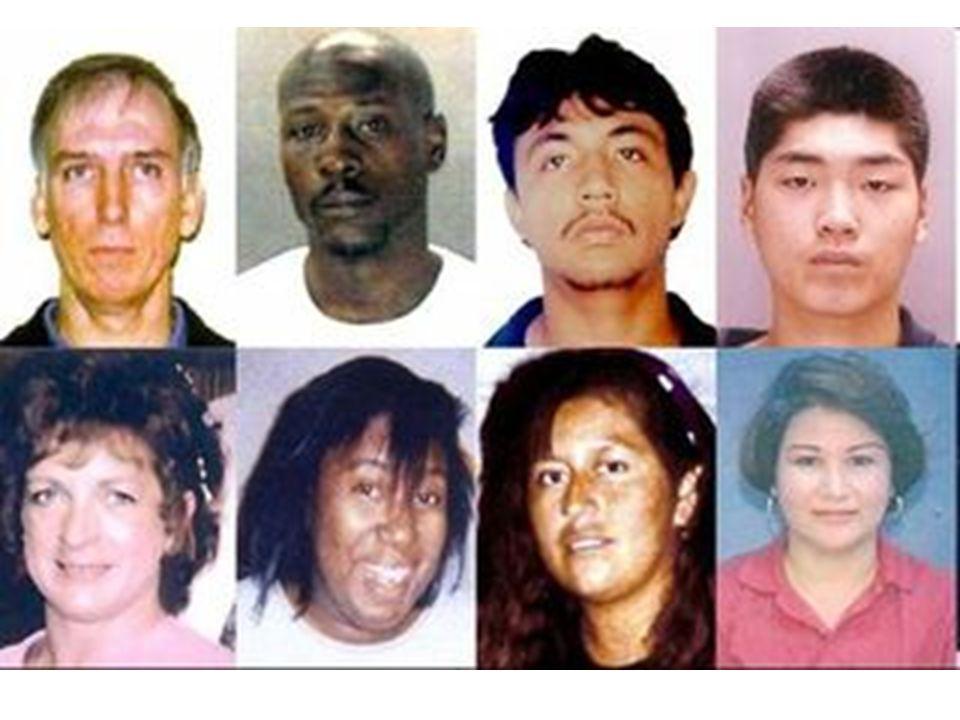 Lidské rasy Společný původ VŠECHNY JSOU ROVNOCENNÉ !!!VŠECHNY JSOU ROVNOCENNÉ !!.