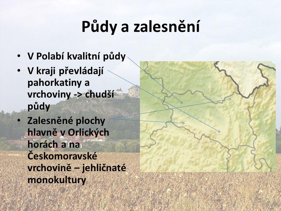 Půdy a zalesnění V Polabí kvalitní půdy V kraji převládají pahorkatiny a vrchoviny -> chudší půdy Zalesněné plochy hlavně v Orlických horách a na Česk