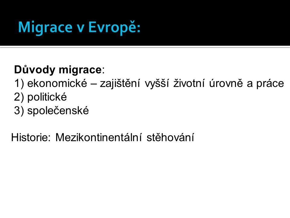 Důvody migrace: 1) ekonomické – zajištění vyšší životní úrovně a práce 2) politické 3) společenské Historie: Mezikontinentální stěhování