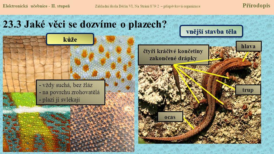 23.3 Jaké věci se dozvíme o plazech.Elektronická učebnice - II.