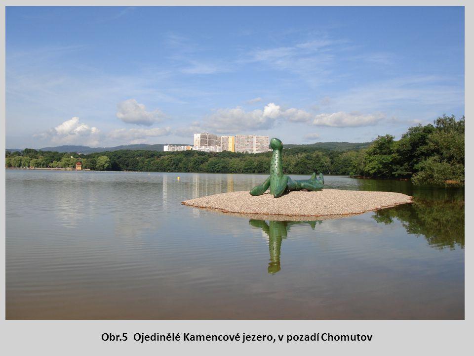 Obr.5 Ojedinělé Kamencové jezero, v pozadí Chomutov
