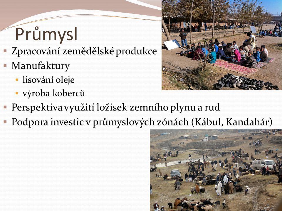 Průmysl  Zpracování zemědělské produkce  Manufaktury  lisování oleje  výroba koberců  Perspektiva využití ložisek zemního plynu a rud  Podpora investic v průmyslových zónách (Kábul, Kandahár)